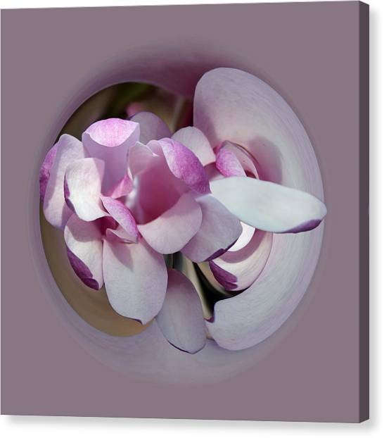 Canvas Print featuring the photograph Magnolia Blossom Series 1305 by Jim Baker