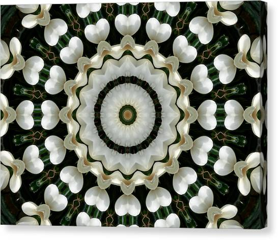 Canvas Print featuring the photograph Magnolia Hearts Mandala by MM Anderson