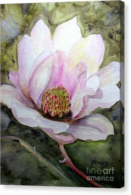 Magnolia In Bloom Canvas Print