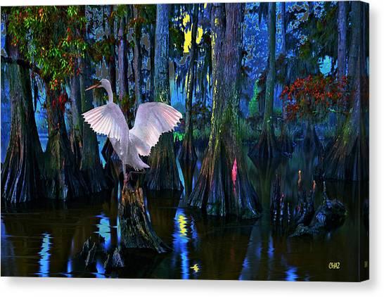 Magnolia Moon Canvas Print