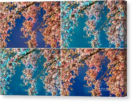 Magnolia Quad Canvas Print