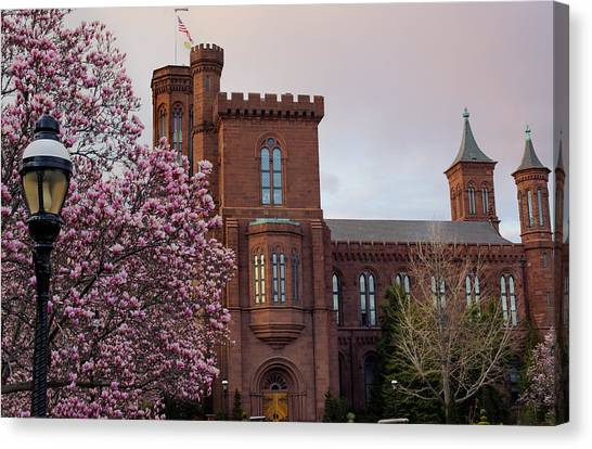 Smithsonian Museum Canvas Print - Magnolias Near The Castle by Andrew Pacheco