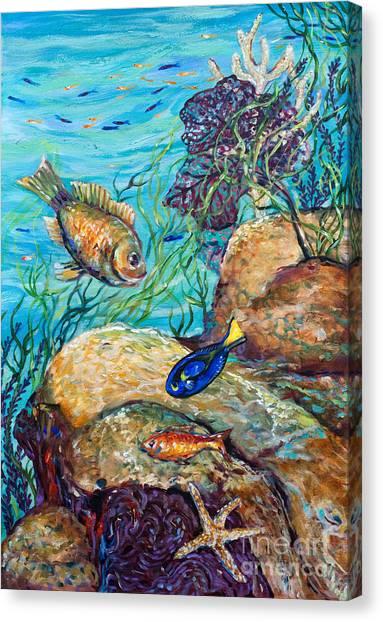 Maho Bay Left Canvas Print