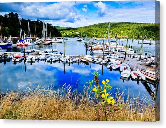 Maine Harbor Canvas Print