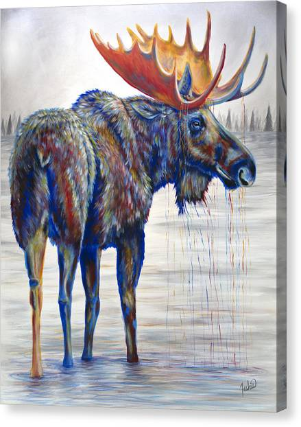 Idaho Canvas Print - Majestic Moose by Teshia Art