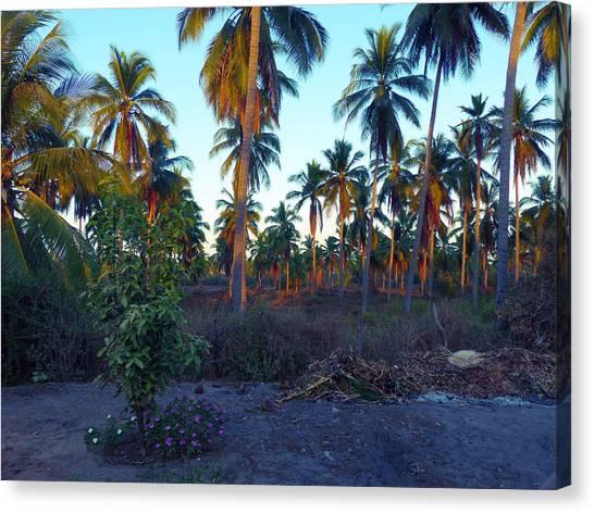 Majestic Purple Palms Canvas Print