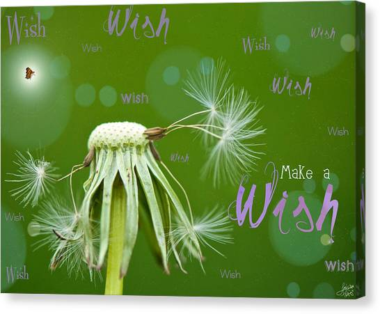 Happy Birthday Canvas Print - Make A Wish Card by Lisa Knechtel