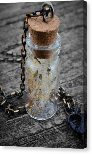 Make A Wish - Dandelion Seed In Glass Bottle With Gold Fairy Dust Necklace Canvas Print