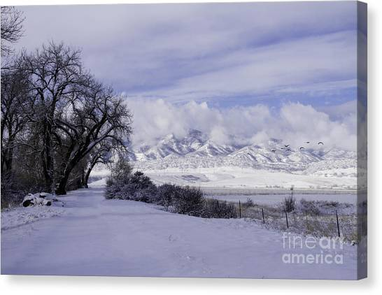 Making First Tracks Canvas Print