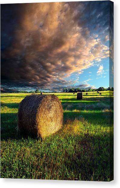 Hay Bales Canvas Print - Making Hay by Phil Koch