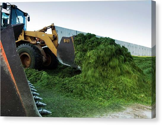 Backhoes Canvas Print - Making Silage by Photostock-israel/science Photo Library