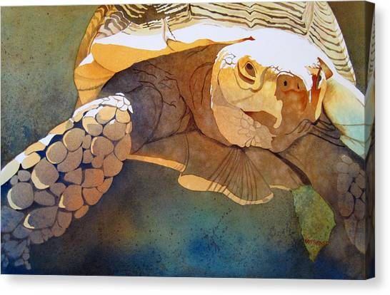 Turtles Canvas Print - Making Tracks by Kris Parins