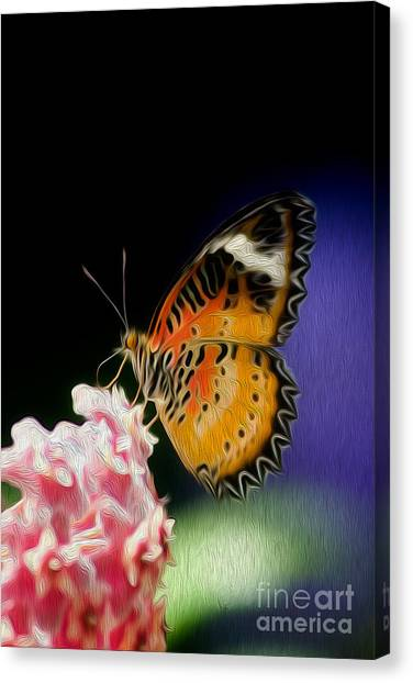 Malay Lacewing Butterfly I Canvas Print by Kenneth Montgomery