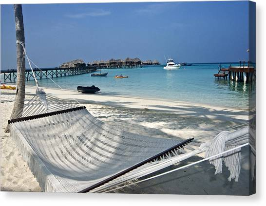 Black Tip Sharks Canvas Print - Maldivian Landscape With Hammock by Marco Battaglia