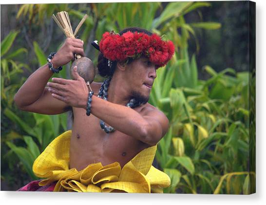 Male Hula Dancer With Small Gourd Instrument Canvas Print