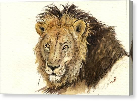 Nature Study Canvas Print - Male Lion by Juan  Bosco