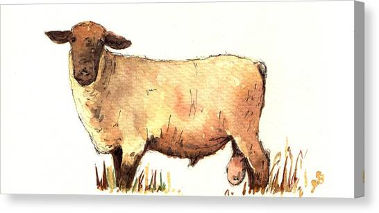 Rural Scenes Canvas Print - Male Sheep Black by Juan  Bosco