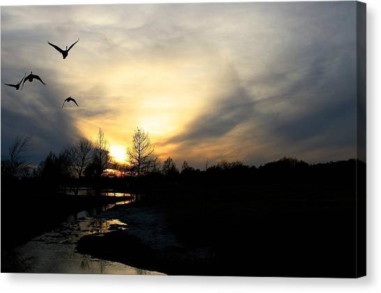 Mallards Silhouette At Sunset Canvas Print