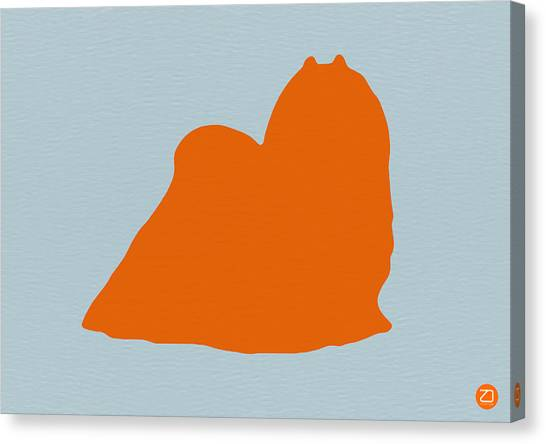Puppies Canvas Print - Maltese Orange by Naxart Studio