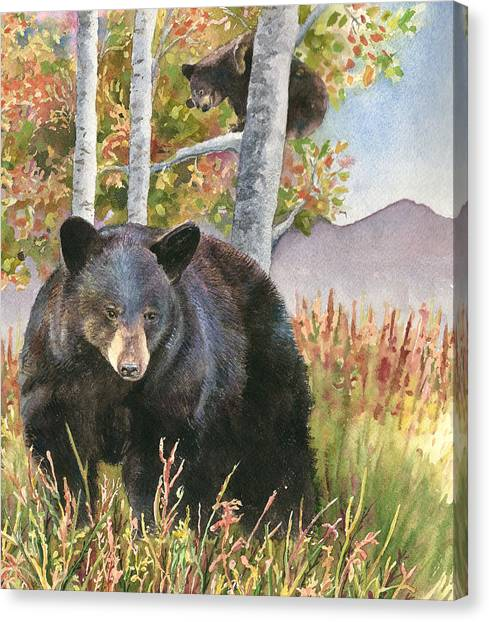 Colorado Canvas Print - Mama Bear by Anne Gifford