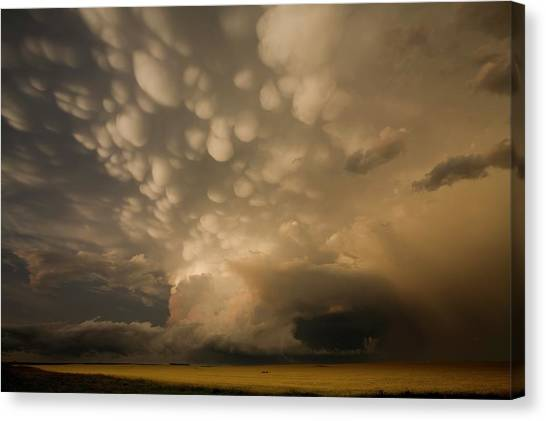 Hailstorms Canvas Print - Mammatus Clouds Over Fields by Roger Hill/science Photo Library