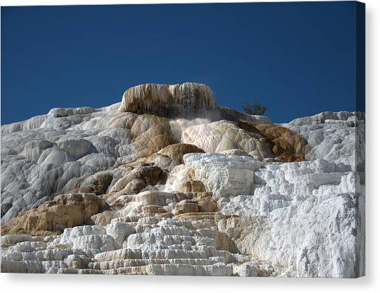 Mammoth Hotsprings 4 Canvas Print