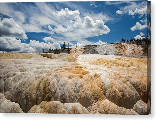 Mammouth Terraces Canvas Print