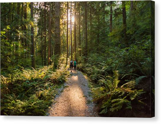 Man And Woman Hikers Admiring Sunbeams Streaming Through Trees Canvas Print by PamelaJoeMcFarlane