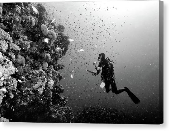 Scuba Diving Canvas Print - Man At Work by Marcel Rebro