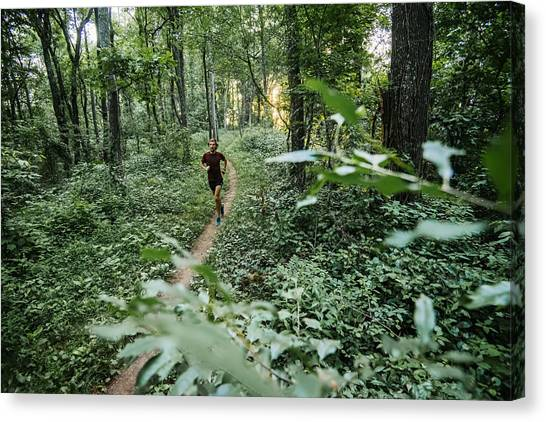Man Jogging In Forest Along Mountain To Sea Trail, Asheville, North Carolina, Usa Canvas Print by Andy Wickstrom / Aurora Photos