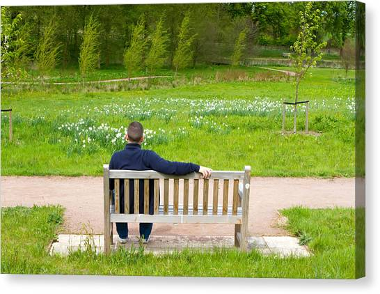 Canvas Print - Man Sitting On A Bench In A Countryside Scene by Fizzy Image