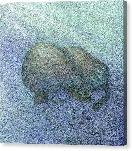 Manatees Canvas Print by Wayne Hardee