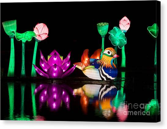 Good Luck Canvas Print - Mandarin Duck Chinese Lantern by Tim Gainey