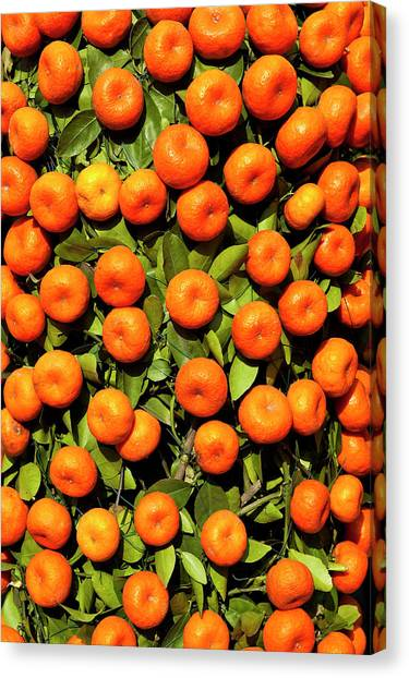 Chinese New Year Canvas Print - Mandarin Tree For Sale At Chinese New by Richard I'anson