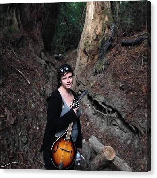 Mandolins Canvas Print - #mandolin #hotchick #woods #forest by Kenneth Van Doren