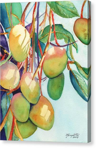 Mango Canvas Print - Mangoes by Marionette Taboniar