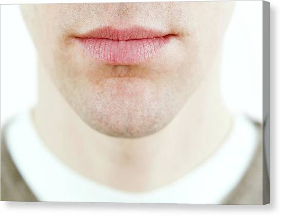 Chin Canvas Print - Man's Lower Face by Gustoimages/science Photo Library