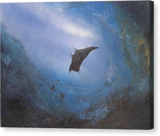 Underwater Caves Canvas Print - Manta In Sea Cave by Affordable Art Halsey