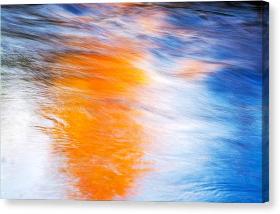Maple Reflection Canvas Print