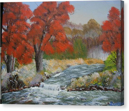 Maples On A Mountain Stream Canvas Print by Joe Reynolds