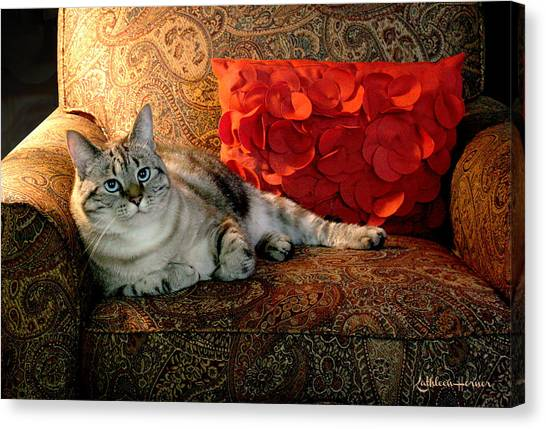 Manx Cats Canvas Print - Marble Portrait by Kathleen Horner