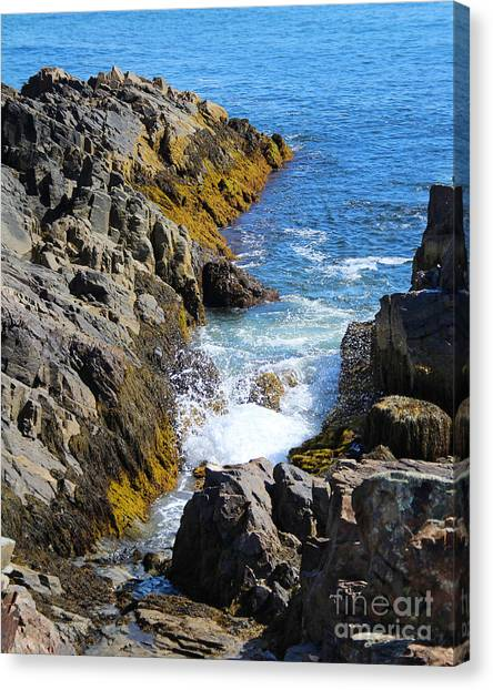 Marginal Way Crevice Canvas Print