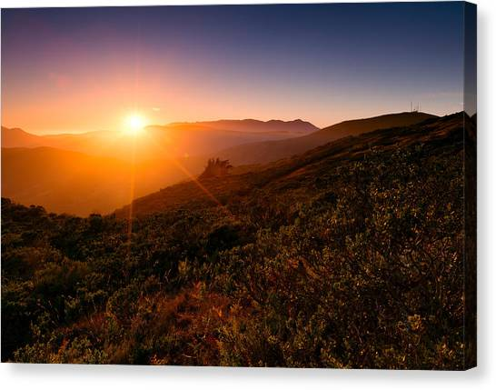 Heather Canvas Print - Marin County Sunset by Alexis Birkill