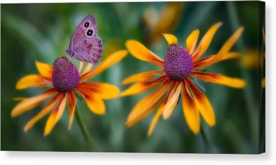Mariposa Dos Flores Canvas Print