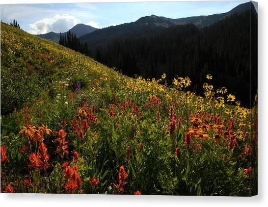 Maroon Bells Wilderness Canvas Print