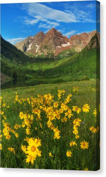 Maroon Summer Canvas Print