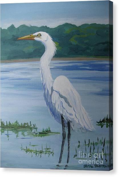 Marsh Land Egret Canvas Print