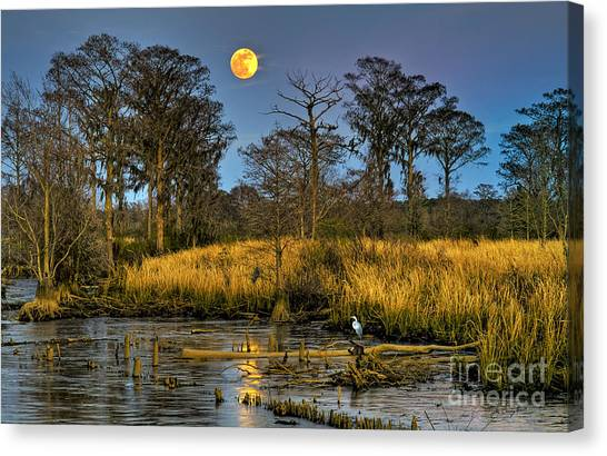 Pawleys Island Marsh Moon Canvas Print