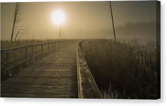 Marsh Morning Canvas Print