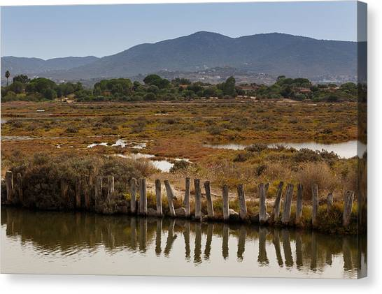 Canvas Print featuring the photograph Marsh by Paul Indigo